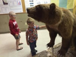 See a bear.